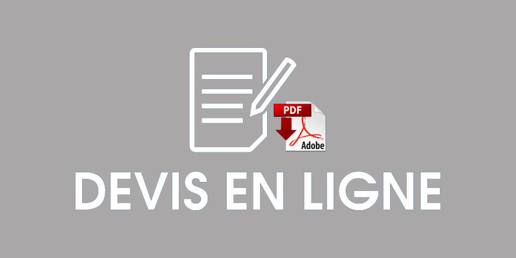 DEVIS EN LIGNE 1